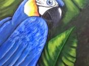 Arara-Azul 3