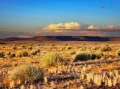 Deserto de Kalahari 1