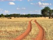 Deserto de Kalahari 2
