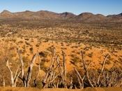 Deserto de Kalahari 4