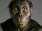 Kenyanthropus Platyops 5