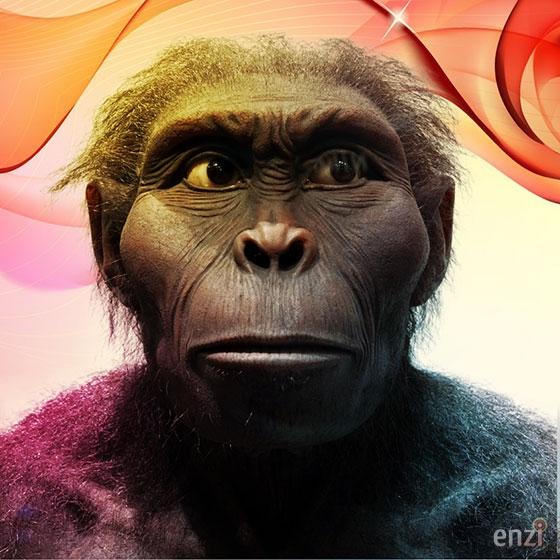Kenyanthropus Platyops 6