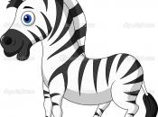 curiosidades-da-zebra-12