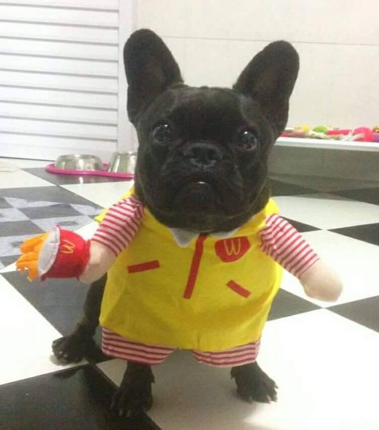 Cachorro Mc Donalds
