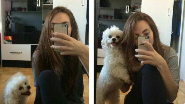 Cachorro: Vai Tirar Foto Mamãe?