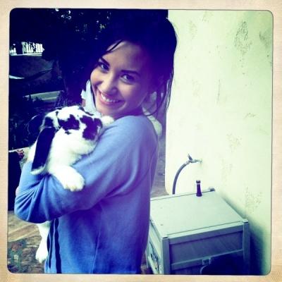 Demi Lovatoe Coelho