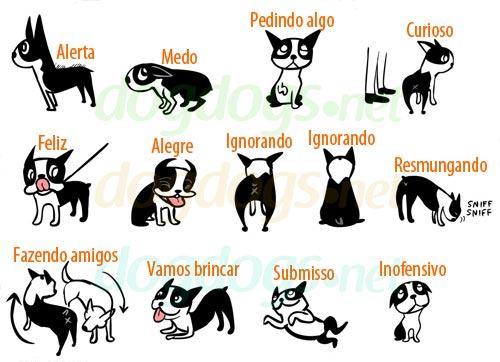 Linguagem dos Cachorros