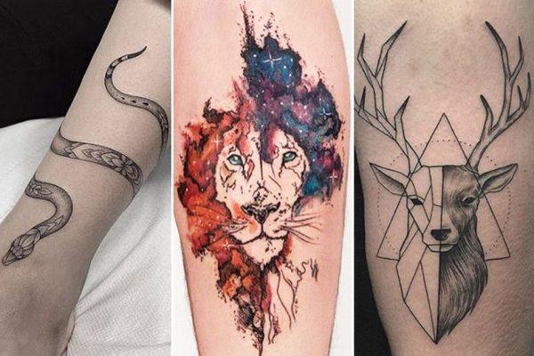 Tatuagem De Animais Fotos E Significado Tattoo Portal