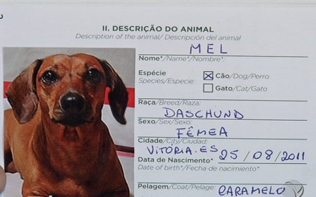 Documento do Pet